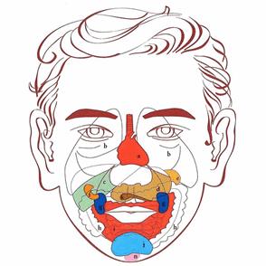 face reflexology diagram 1